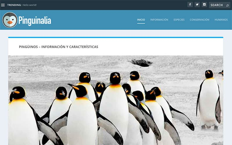 Pinguinalia